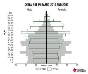 Aging Pyramid - Collective Responsibility