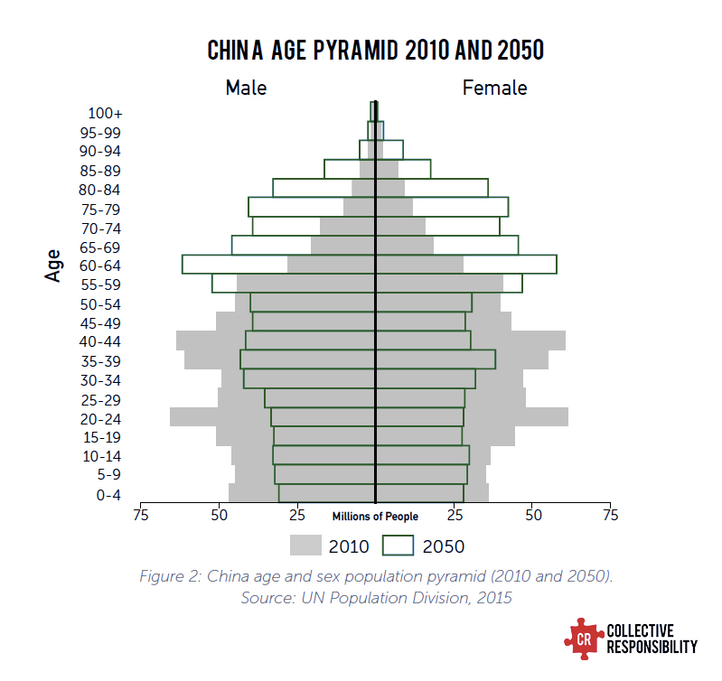 Davos Age Pyramid Concerns Chinese - Collective Responsibility