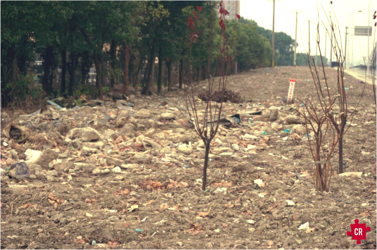 Shanghai Landfills - Collective Responsibility